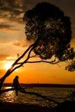 Silhouette des jeunes femmes s'asseyant sur l'arbre au coucher du soleil photos stock