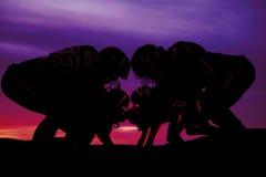 Silhouette des joueurs de football sur la ligne Images libres de droits