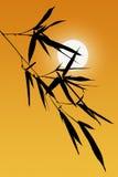 Silhouette des lames en bambou Images libres de droits