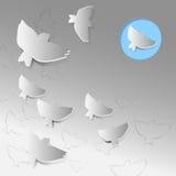 Silhouette des oiseaux Photos stock