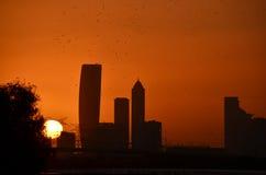 Silhouette des oiseaux au-dessus de l'horizon de Dubaï au coucher du soleil Photo stock