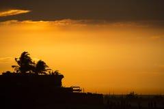 Silhouette des palmiers dans Mancora pendant un coucher du soleil merveilleux Photos stock