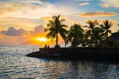 Silhouette des palmiers et du coucher du soleil au Tahiti image libre de droits