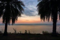 Silhouette des palmiers tout près le réservoir à l'aube Image stock
