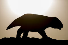 Silhouette of dinosaur against the sunset, Ischigualasto Stock Images