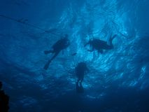 Silhouette of diver`s above on shot line. Royalty Free Stock Photos