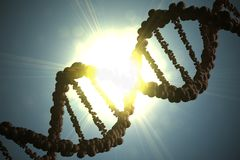 Silhouette of DNA molecule against bright light. 3D rendered illustration Stock Photo