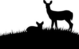Silhouette doe with fawn