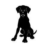 Silhouette dog Abracadabra Stock Photos