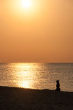 Silhouette of a dog on the beach. Sunrise on the beach and the silhouette of the  dog Royalty Free Stock Photography