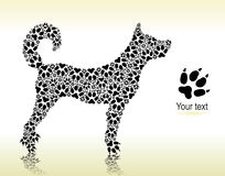 Silhouette of dog from the cat tracks Stock Photos