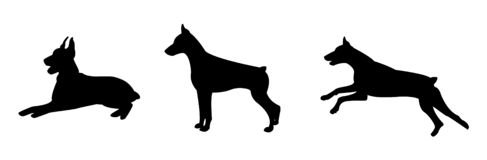 Silhouette of a dog in various poses. The dog is lying. The dog is standing. The dog is running vector illustration