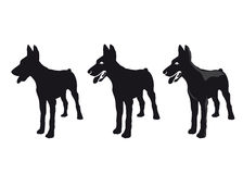 Silhouette of a dog. Vector silhouette of a dog Stock Photos