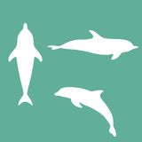Silhouette of a dolphin. Vector illustration. EPS 8 Royalty Free Stock Images