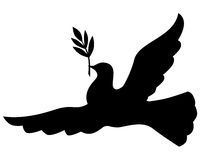 Silhouette dove with branch Stock Image