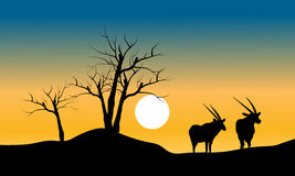 Silhouette of dry tree and antelope Royalty Free Stock Image