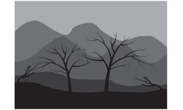 Silhouette of dry tree Stock Images