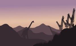 Silhouette du brachiosaurus deux dans les domaines Images stock