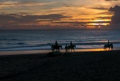 Silhouette du groupe de personnes ayant l'aventure d'équitation sur b Image stock
