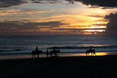 Silhouette du groupe de personnes ayant l'aventure d'équitation sur b Photo libre de droits