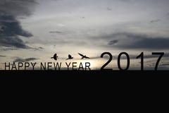 Silhouette du numéro 2017 sur le toit et le coucher du soleil de maison dans le twilig Image libre de droits