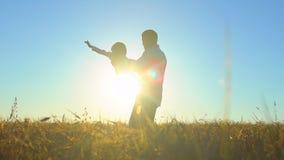 Silhouette du père et du fils jouant, appréciant le coucher du soleil dans le domaine de blé en nature le jour d'été Marche heure clips vidéos