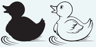 Silhouette duckling Stock Images