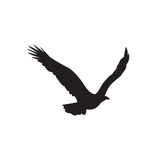 Silhouette of the eagle in flight with wings spread Royalty Free Stock Images