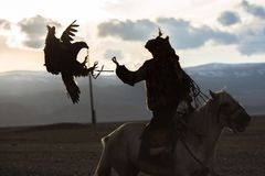 Silhouette of the Eagle Hunter traditional clothing, while hunting to the hare with a golden eagle in desert mountain. SAGSAY, MONGOLIA - SEP 28, 2017 Royalty Free Stock Images