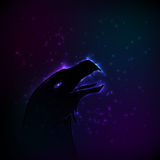 Silhouette of eagle at night. Stock Image