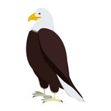 Silhouette eagle in standing position. Illustration Stock Image