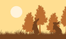 Silhouette of easter bunny on field landscape. Vector art Stock Image