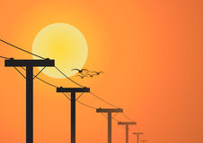 Silhouette electricity post before sunset Royalty Free Stock Images