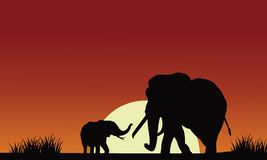 Silhouette of elephant with sun Royalty Free Stock Photo