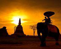 Silhouette an elephant, Thailand Stock Photo
