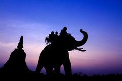 Silhouette of elephants Stock Photography