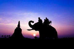 Silhouette of elephants Royalty Free Stock Photography