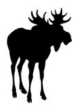 Silhouette of elk isolate Stock Photos