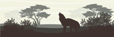silhouette En varg tjuter i en lövskog royaltyfri illustrationer
