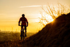 Silhouette of Enduro Cyclist Riding the Mountain Bike on the Rocky Trail at Sunset. Active Lifestyle Concept. Space for Text. Royalty Free Stock Photo