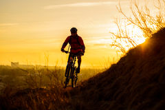 Silhouette of Enduro Cyclist Riding the Mountain Bike on the Rocky Trail at Sunset. Active Lifestyle Concept. Space for Text. Royalty Free Stock Image