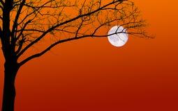Silhouette et lune surréalistes d'arbre Image stock