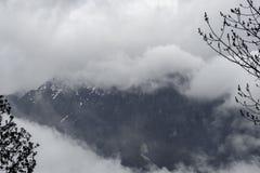Silhouette et pluie d'arbre au-dessus des montagnes de forêt Photographie stock