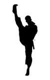 silhouette för clippingbana arkivfoto