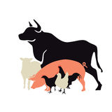 Silhouette of farm animals. Silhouette drawings of steer, pig, lamb and chickens on white Royalty Free Stock Photography