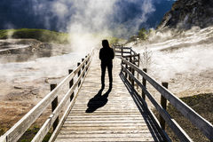 Silhouette of female standing on boardwalk with steam in Yellowstone National Park, Wyoming Stock Photography