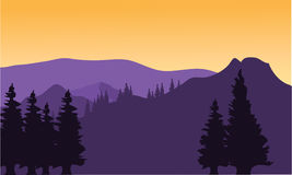 Silhouette or fir trees on the mountain. With purple background Royalty Free Stock Images