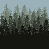 Silhouette of fir trees scape. Card Royalty Free Stock Images