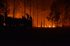 Silhouette of Firemen fighting a raging fire. With huge flames of burning timber Stock Images