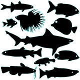 Silhouette of fish Royalty Free Stock Photos